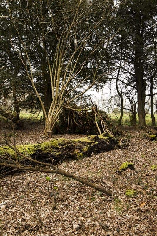 Shelter building from Wildway Bushcraft