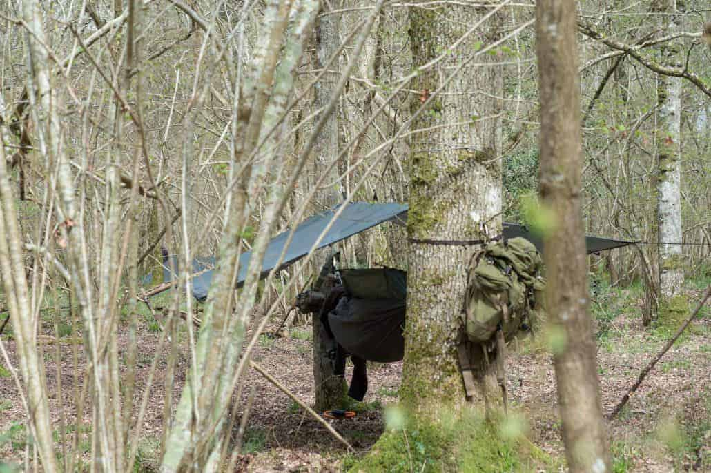 Bushcraft in dorset