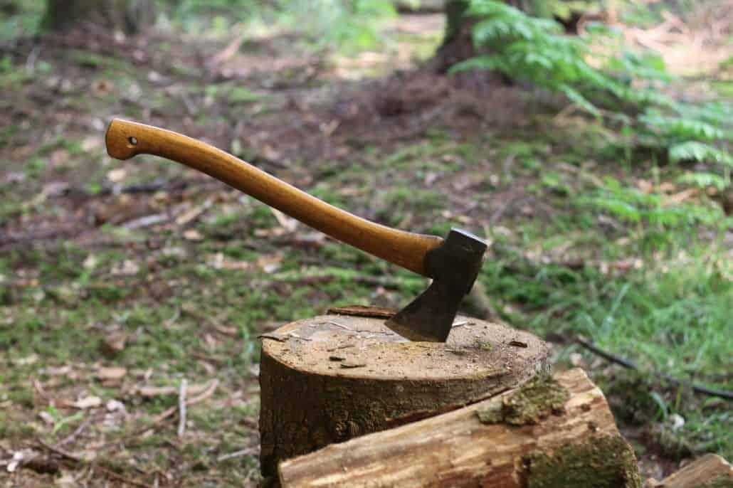 Weekend bushcraft courses UK Dorset Hampshire