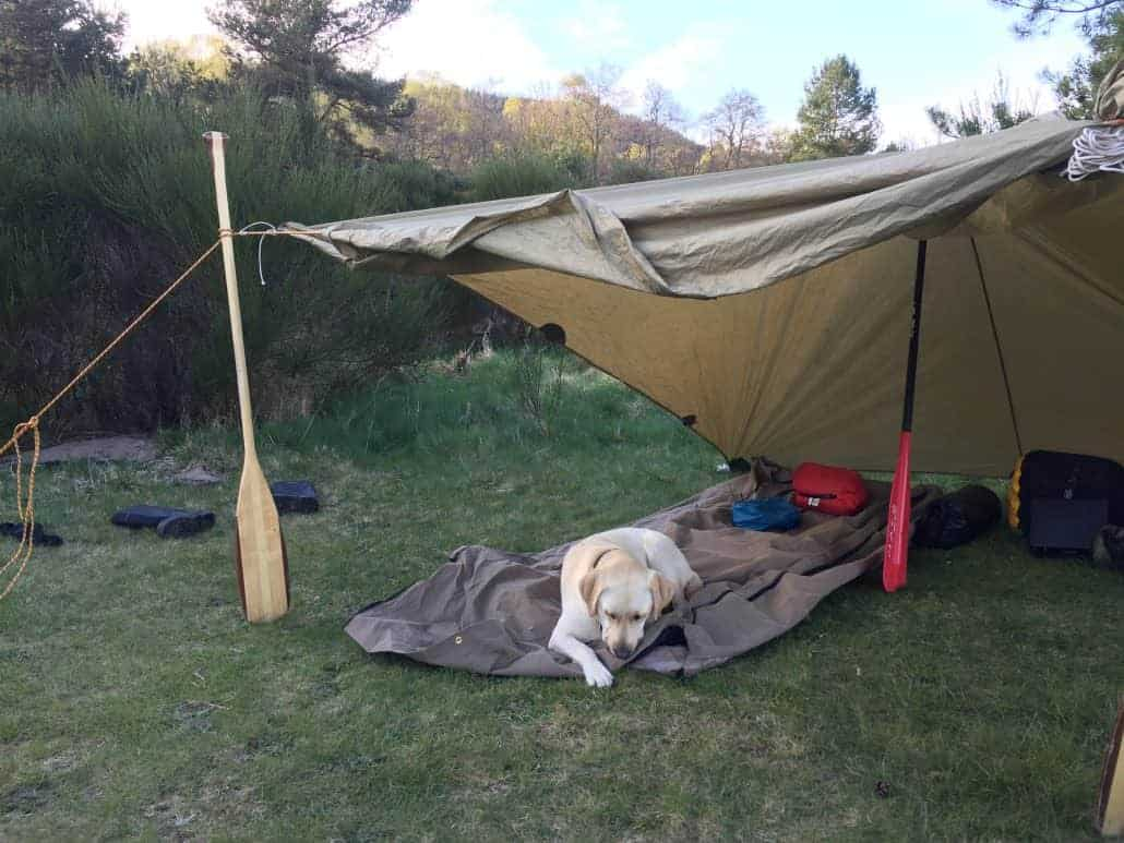 Tarp set ups from Wildway Bushcraft