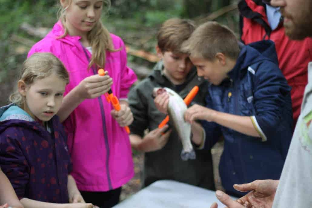 Family bushcraft course knife safety children